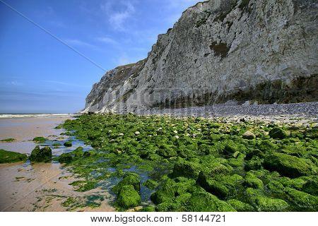 Green Rocks On Sea Coast Near Wissant City At Nord-pas-de-calais Region, France.