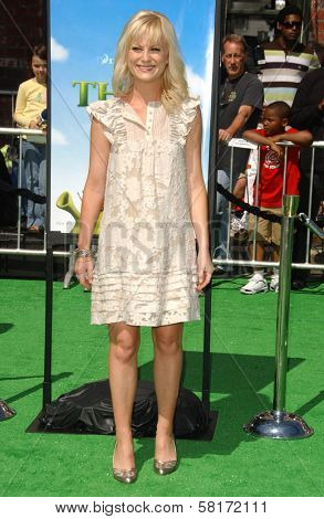 Amy Poehler at the Los Angeles Premiere of
