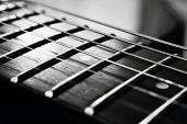 pic of fret  - The endless strings of electric guitar in black and white - JPG