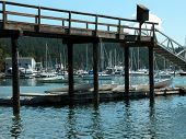stock photo of orca  - West Port is located on Orcas Island in Washington - JPG