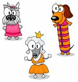 picture of poodle skirt  - Three funny cartoon dogs in clothes  - JPG