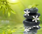 stock photo of white flower  - Spa still life with white flowers on the black stones and bamboo leafs - JPG