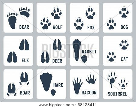 Animal Tracks Vector Icons Set