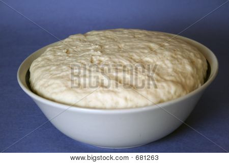 Potato Bread Risen Dough