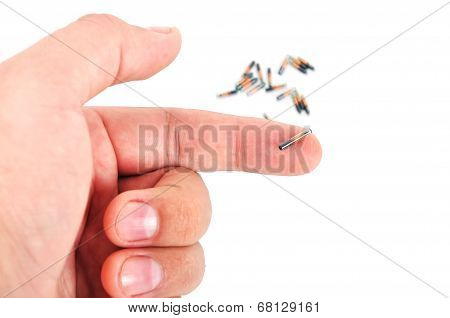 Animal Implant