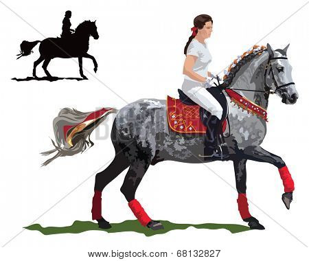 Lady rides parade dressed horse . Color vector illustration on white background.