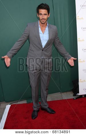 LOS ANGELES - JUL 8:  Brandon Beemer at the Crown Media Networks July 2014 TCA Party at the Private Estate on July 8, 2014 in Beverly Hills, CA