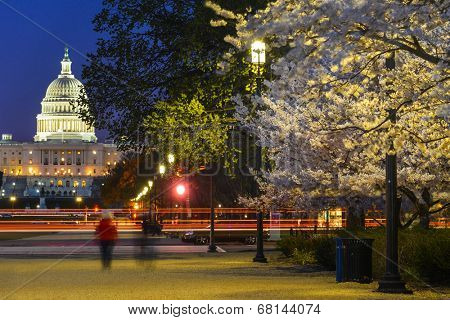 United States Capitol at night - Washington D.C.