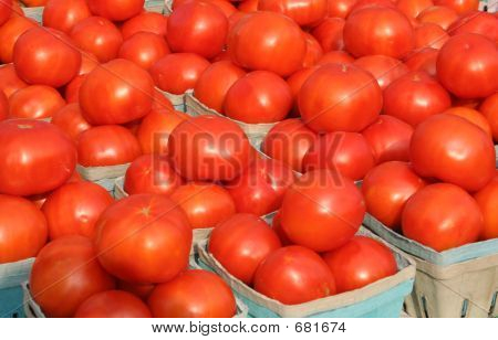 Brightly Colored Tomatoes2