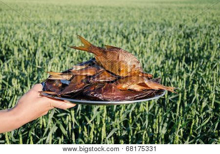 Hand Holds Plate With Smoked Fish Rudd