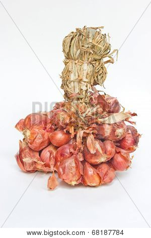 Big Bunch Of Small Red Shallot Onions Isolated On White Background.