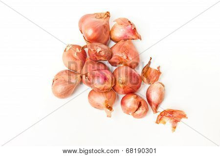 Group Of Small Red Onion.