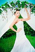 pic of wedding arch  - Charming elegant bride under the wedding arch - JPG