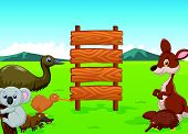 picture of platypus  - vector illustration of Wild Australia cartoon with wooden sign - JPG