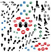 picture of hoof prints  - Image of various prints and footprints of adults children and shoes - JPG