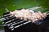 foto of marinade  - Barbecue in Nature, Raw Pork Meat with Marinade.