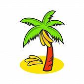 stock photo of banana tree  - Ripe bananas fall from the palm trees on the sand - JPG