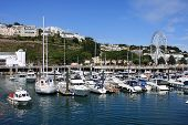 pic of marina  - yachts moored in Torquay marina in Devon - JPG