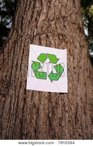 Recycling Sign On The Trunk Of A Tree