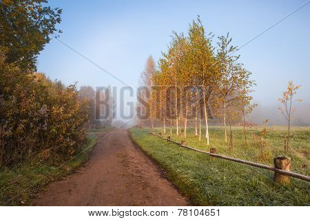 Early Foggy Morning In The Estate Trigorskoye