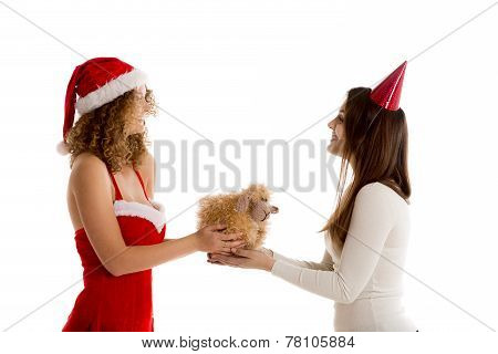 Two girls holding Xmas gift