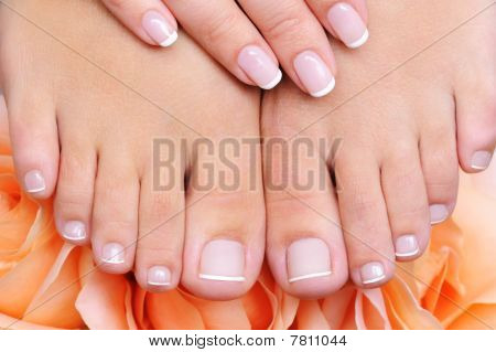 Female Clean, Pure  Feet With French Pedicure