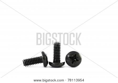 The Metal Bolts.