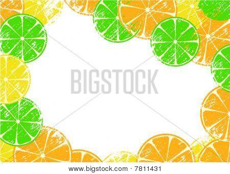 Grunge frame with slices of lemon, orange and lime