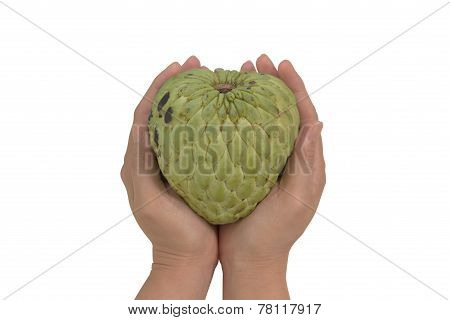 Woman hand form a heart shape holding bruised sugar apple