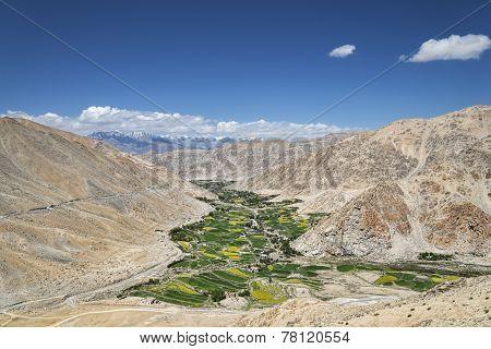 Green Fields Among Desert Mountains