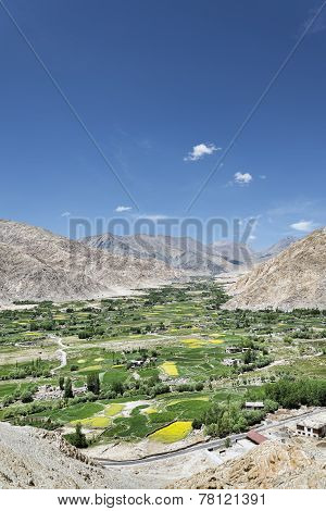 Green Oasis Village In Desert Mountains