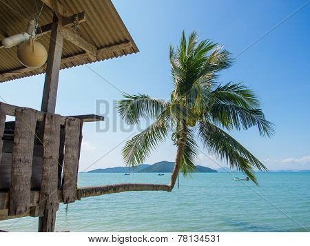 Fisherman cabin on the beach built on a coconut tree