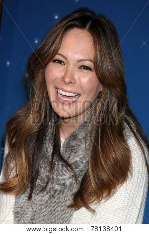 LOS ANGELES - DEC 11:  Lindsay Price at the