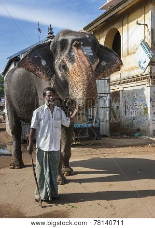 Mahout And His Elephant.