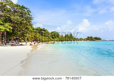 Beautiful Tropical Beach With Palms