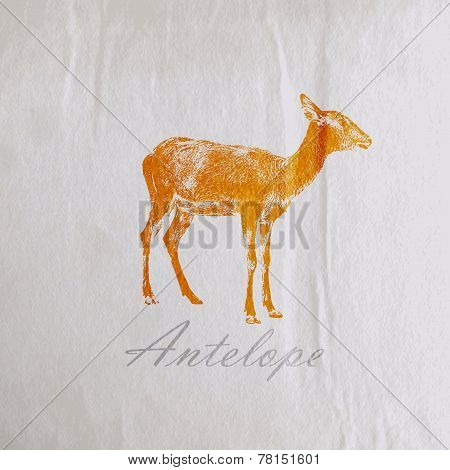vector vintage illustration of an antelope on the old wrinkled paper texture