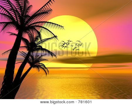 Colorful Tropical sunset, sunrise