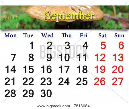 Calendar For September Of 2014 On The Background Of Mushrooms