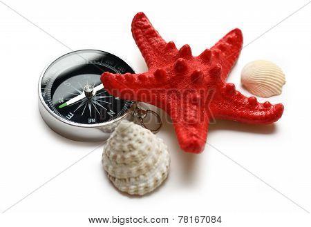 Compass, Seastar And Seashells