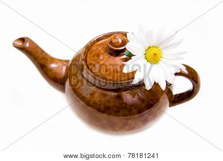 Teapot with chamomile
