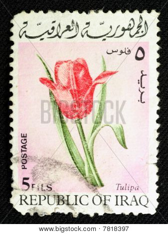 Old Stamp From Iraq