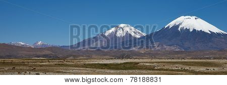 Volcanoes on the Altiplano