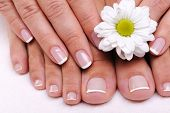 foto of pedicure  - Beautiful well - JPG