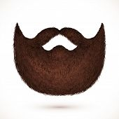 pic of mustache  - Brown vector mustaches and beard isolated on white background - JPG