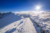 pic of snowy hill  - Tatra mountains in snowy winter time - JPG