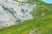 Mountain hike poster