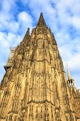 stock photo of koln  - Facade of the Dom church in the city Cologne lit by evening sun - JPG