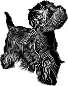 image of west highland white terrier  - dog animal West Highland White Terrier vector - JPG