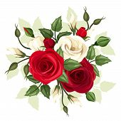 image of english rose  - Vector illustration of red and white roses and lisianthus flowers with leaves on a white background - JPG