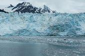 image of mear  - Icebergs float in front of Alaska - JPG